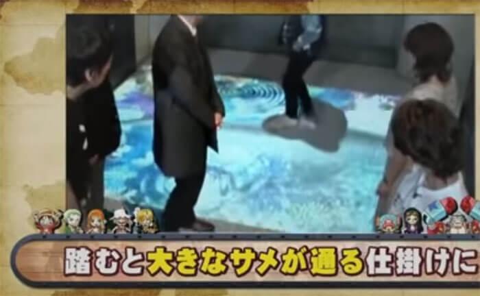 サメが通る