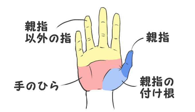 手を4つのパーツにわける