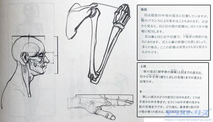 モルフォ人体デッサン11ページ