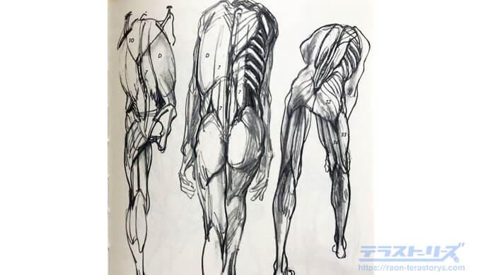 モルフォ人体デッサン73ページ
