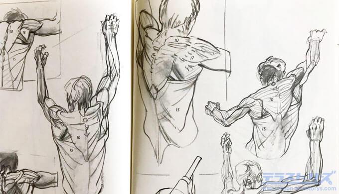 モルフォ人体デッサン128,129ページ